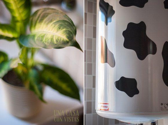 Detalle planta y termo decorado