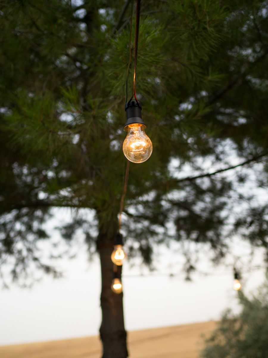 Guirnalda de bombillas en el campo