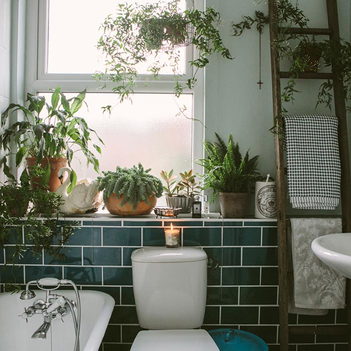 Baño decorado con plantas