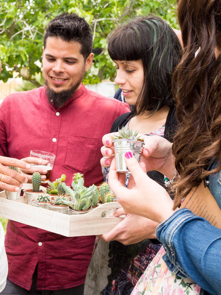 Bandeja con cactus regalo boda