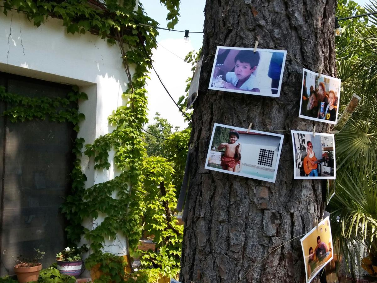 Fotos en árbol para decorar boda