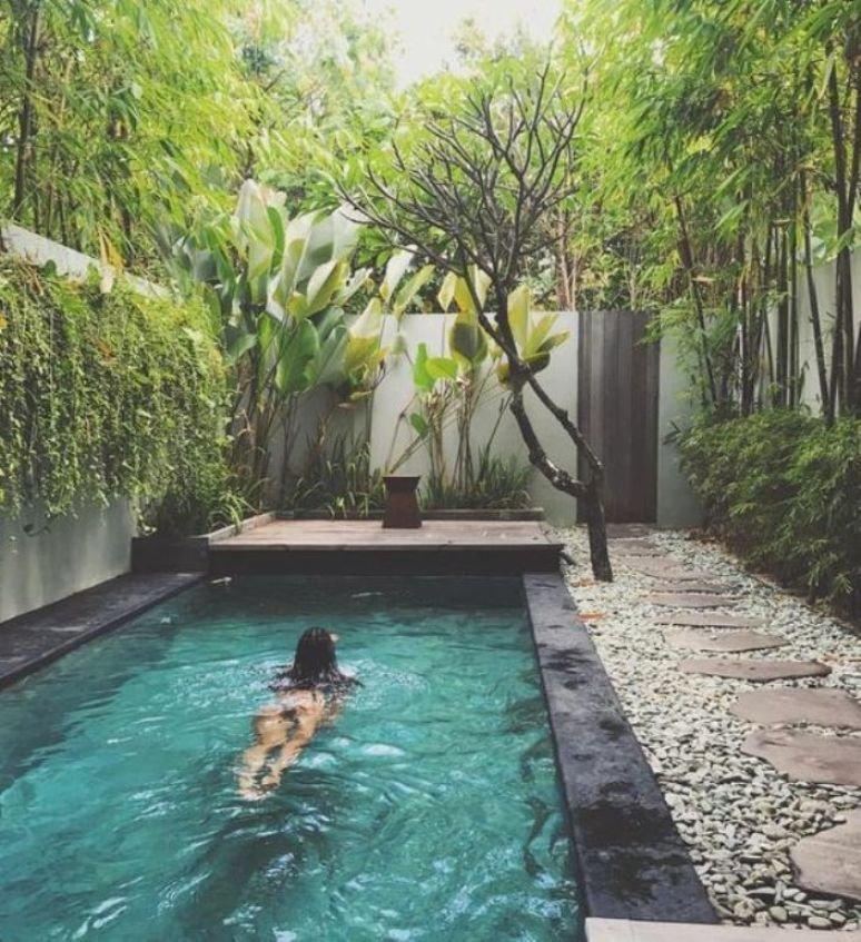 Pequeña piscina rodeada de vegetación