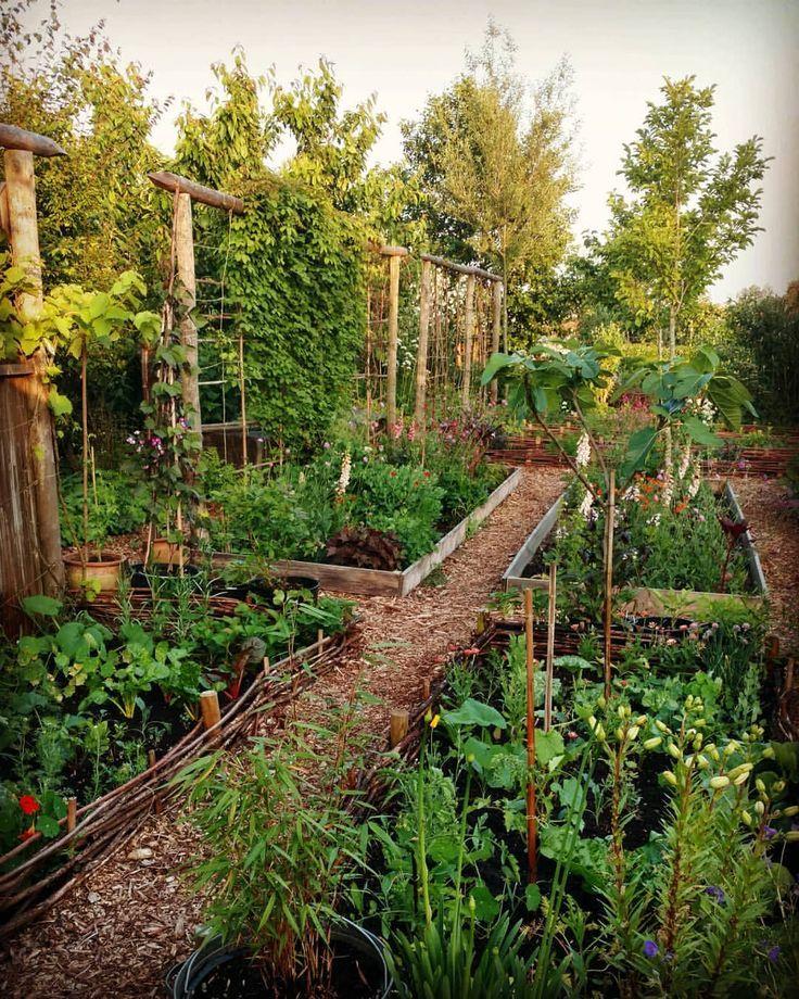 Huerto urbano en jardín