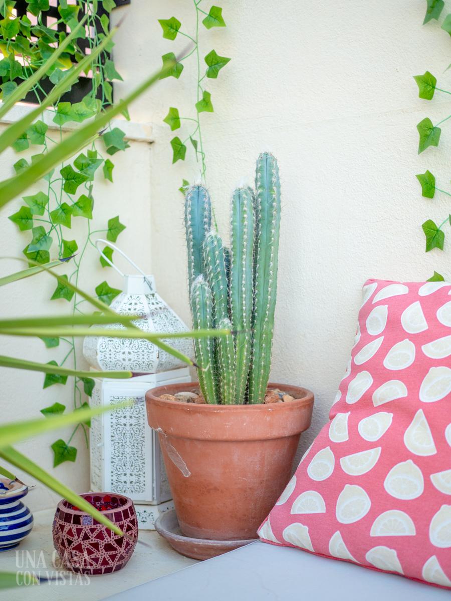 Rincón con plantas en la terraza